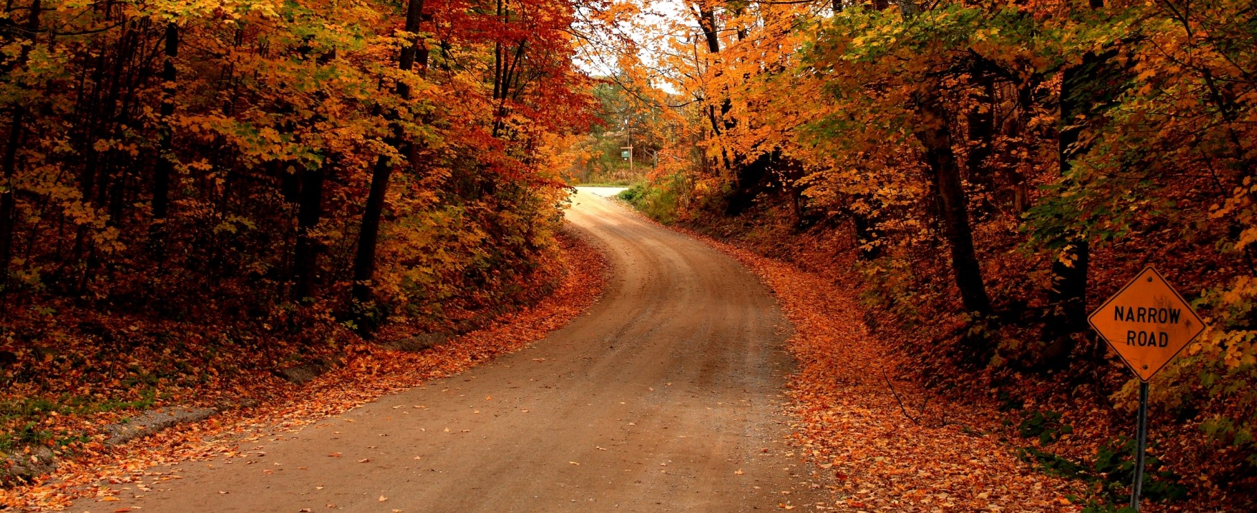 Fall trucking tips blog picture